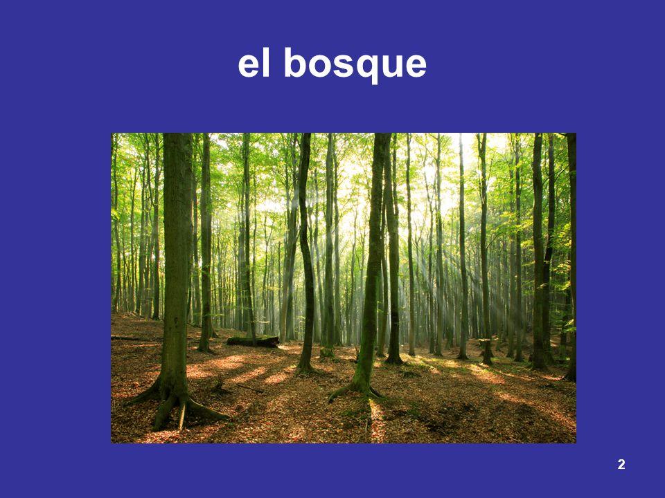 2 el bosque