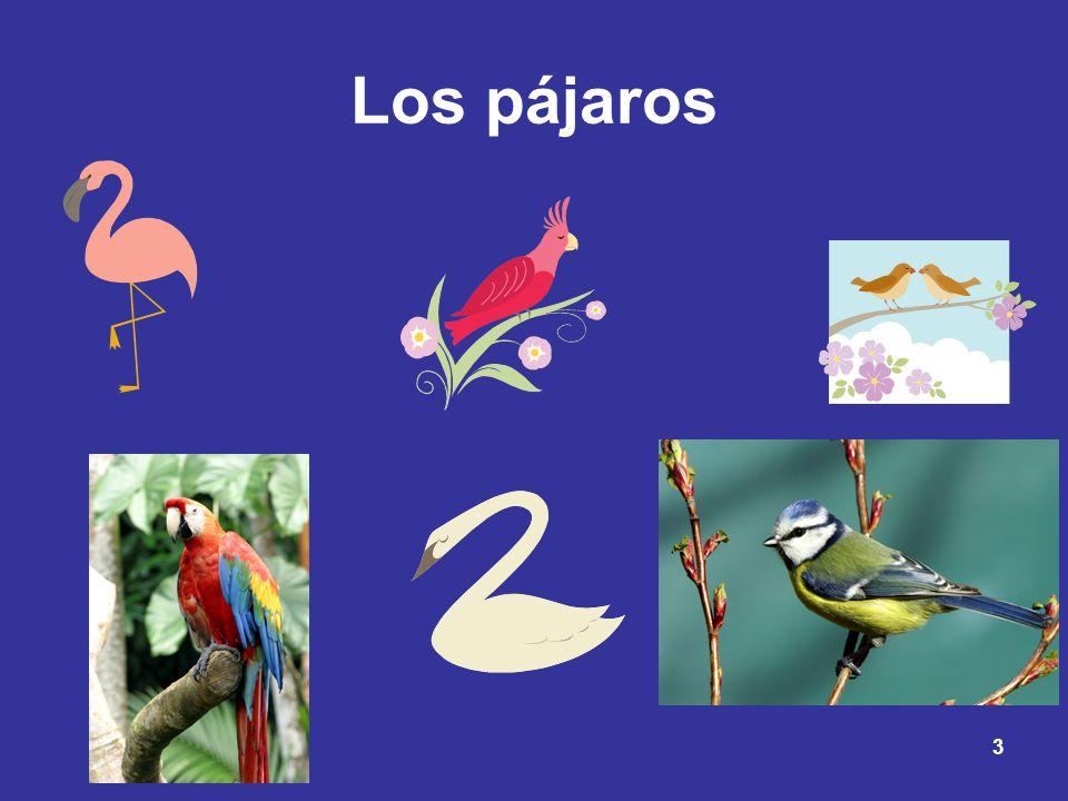 3 Los pájaros