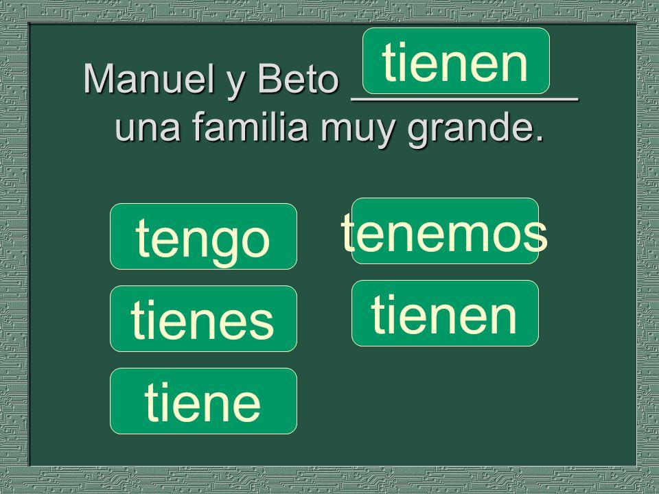 Manuel y Beto __________ una familia muy grande. tenemos tienen tengo tienes tiene