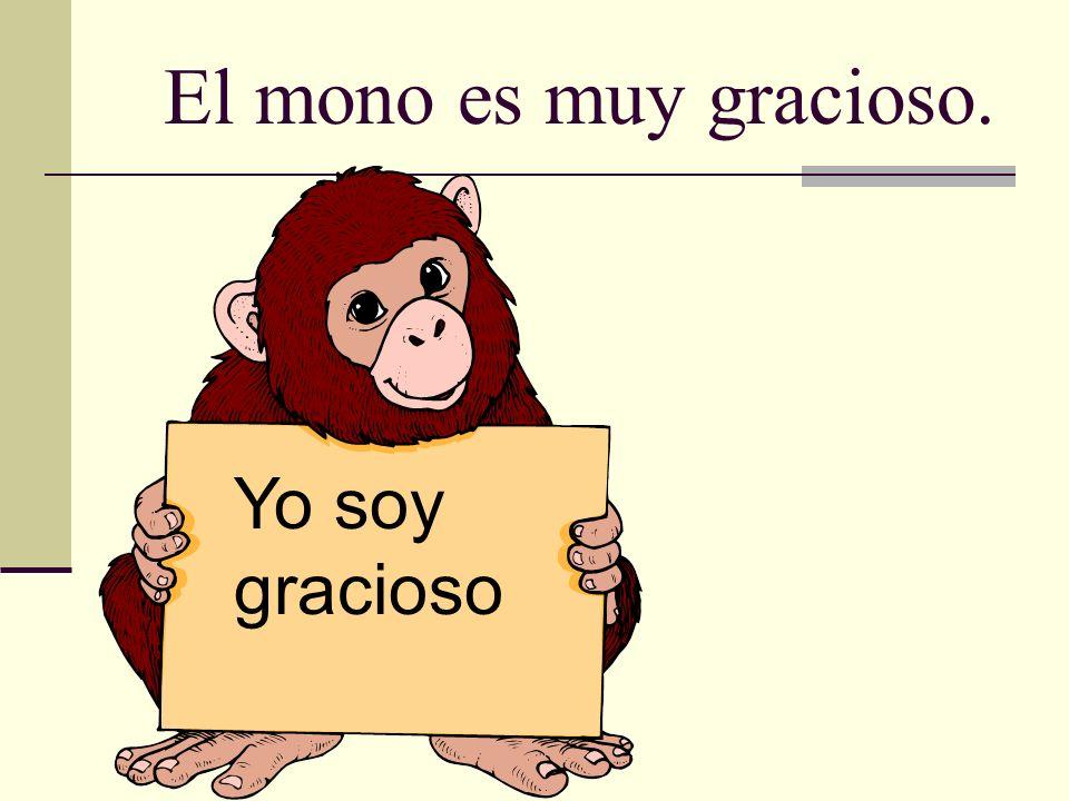 El mono es muy gracioso. Yo soy gracioso