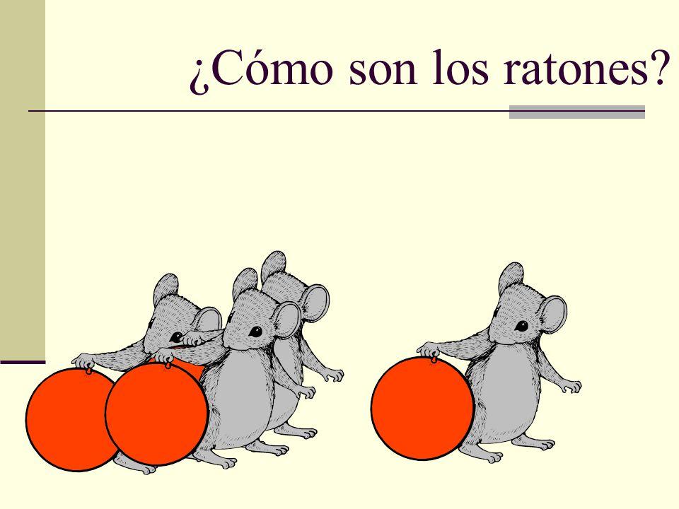 ¿Cómo son los ratones?