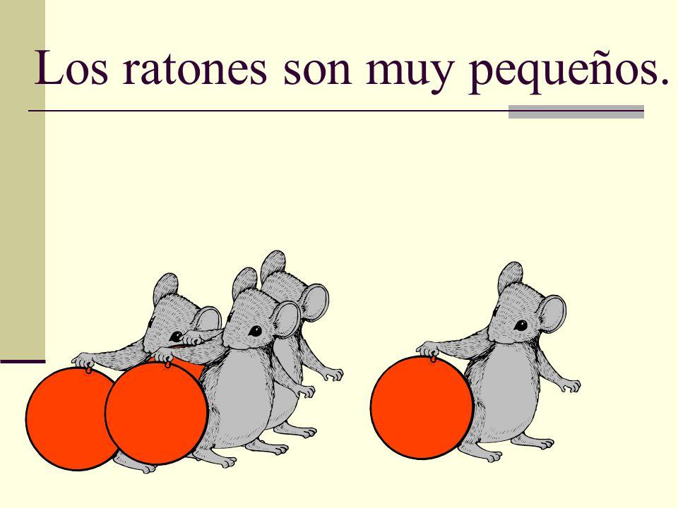 Los ratones son muy pequeños.