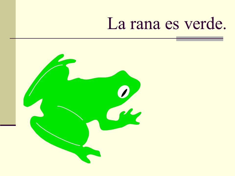 La rana es verde.