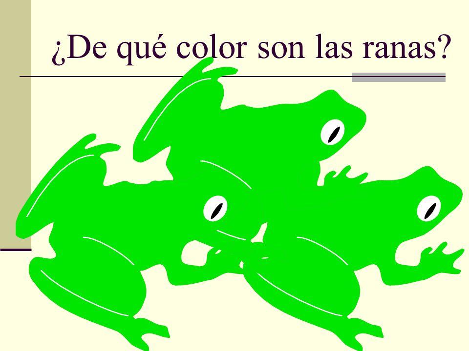 ¿De qué color son las ranas?