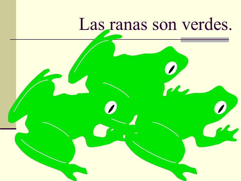 Las ranas son verdes.