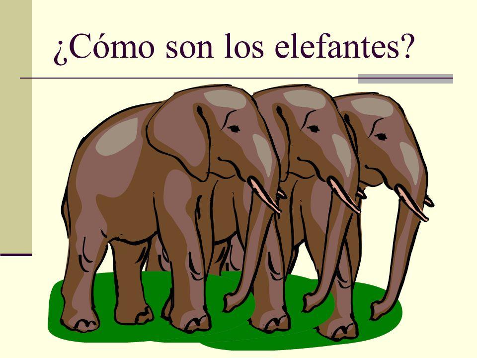 ¿Cómo son los elefantes?