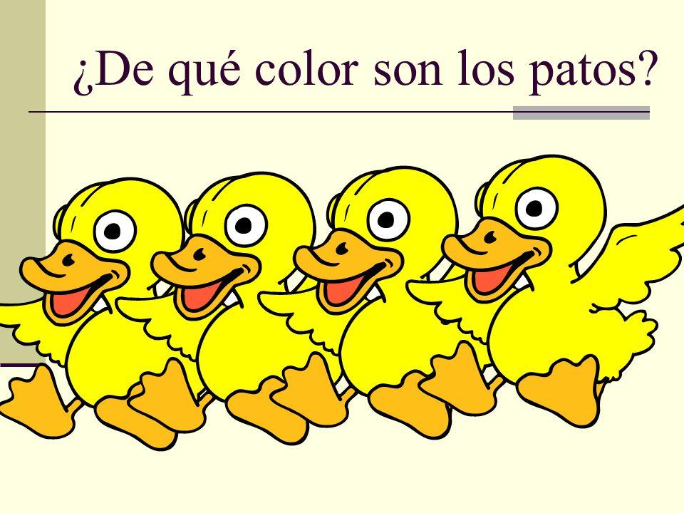 ¿De qué color son los patos?