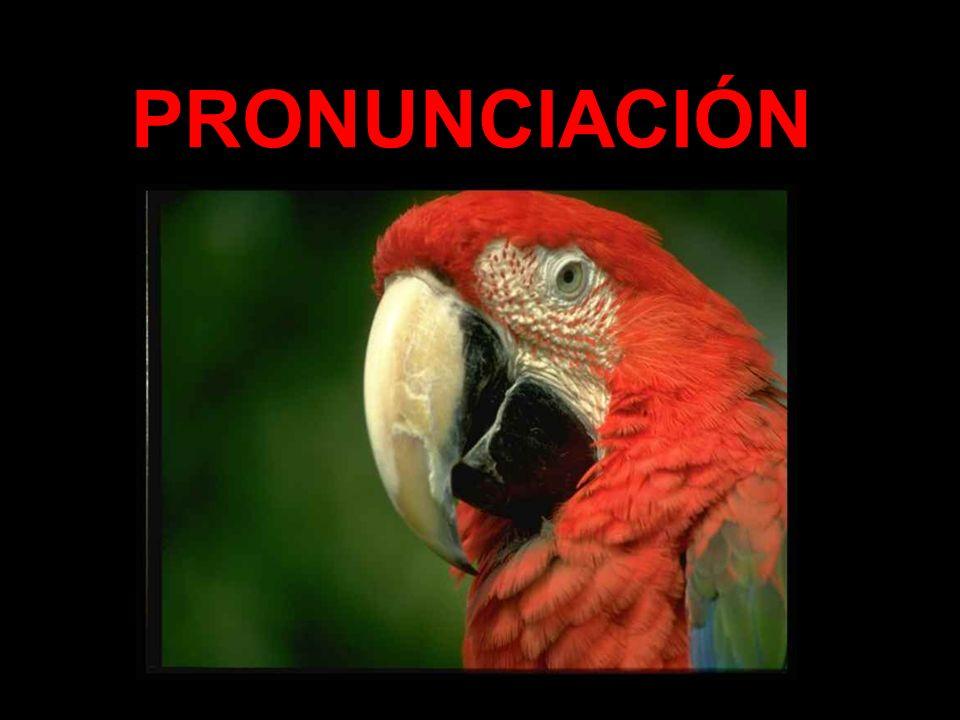 Silabeo- posición de sílabas ¿Cómo se pronuncia pensamiento.