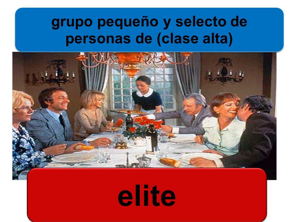 elite grupo pequeño y selecto de personas de (clase alta)