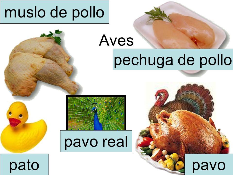 Aves muslo de pollo pechuga de pollo patopavo pavo real