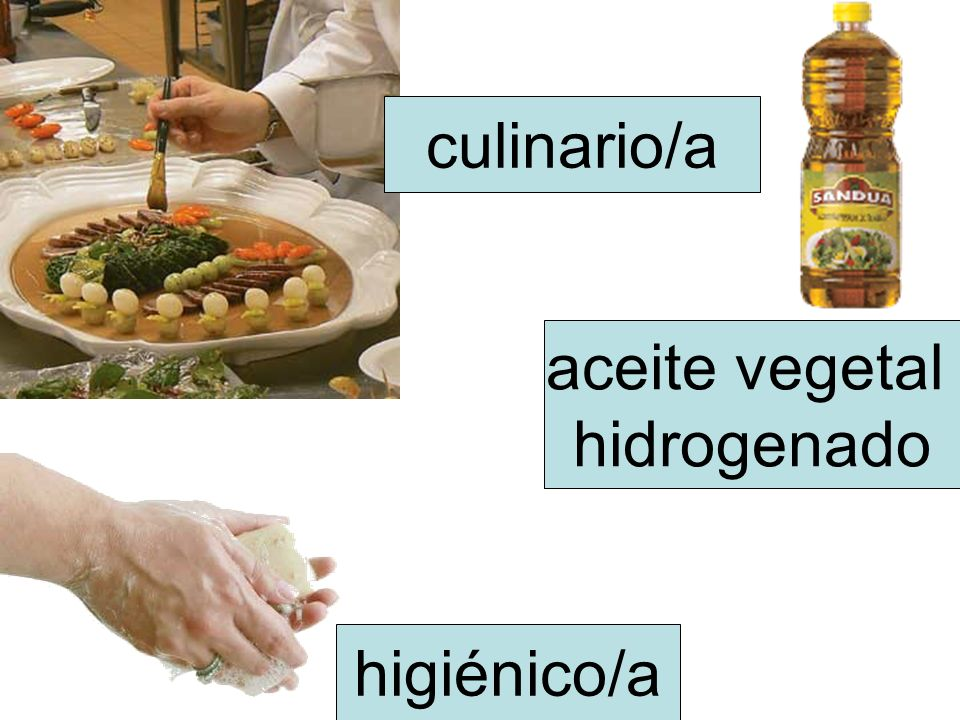 aceite vegetal hidrogenado culinario/a higiénico/a