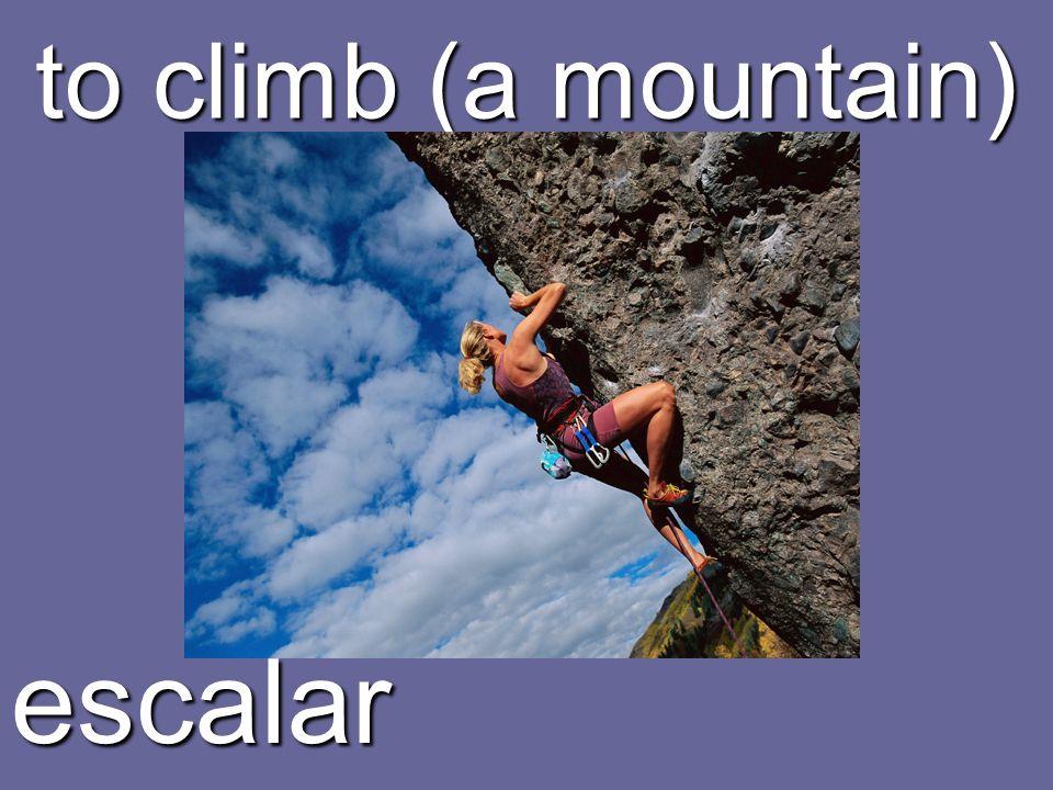 to climb (a mountain) escalar