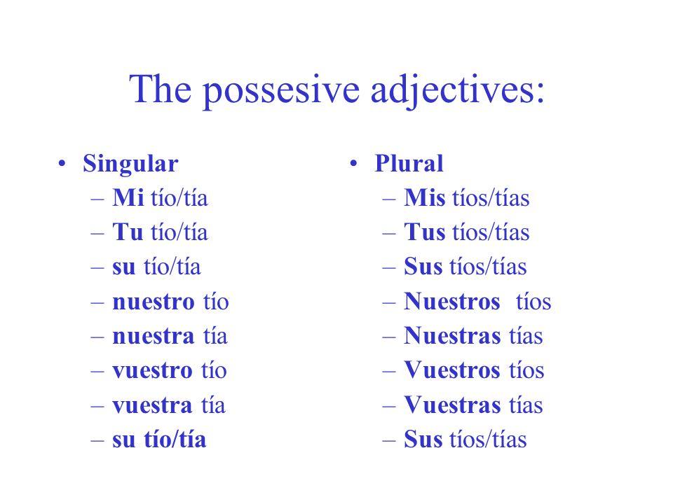 The possesive adjectives: Singular –Mi tío/tía –Tu tío/tía –su tío/tía –nuestro tío –nuestra tía –vuestro tío –vuestra tía –su tío/tía Plural –Mis tío