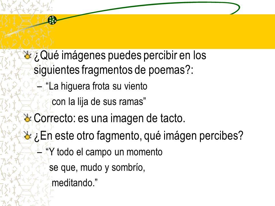 ¿Qué imágenes puedes percibir en los siguientes fragmentos de poemas?: –La higuera frota su viento con la lija de sus ramas Correcto: es una imagen de
