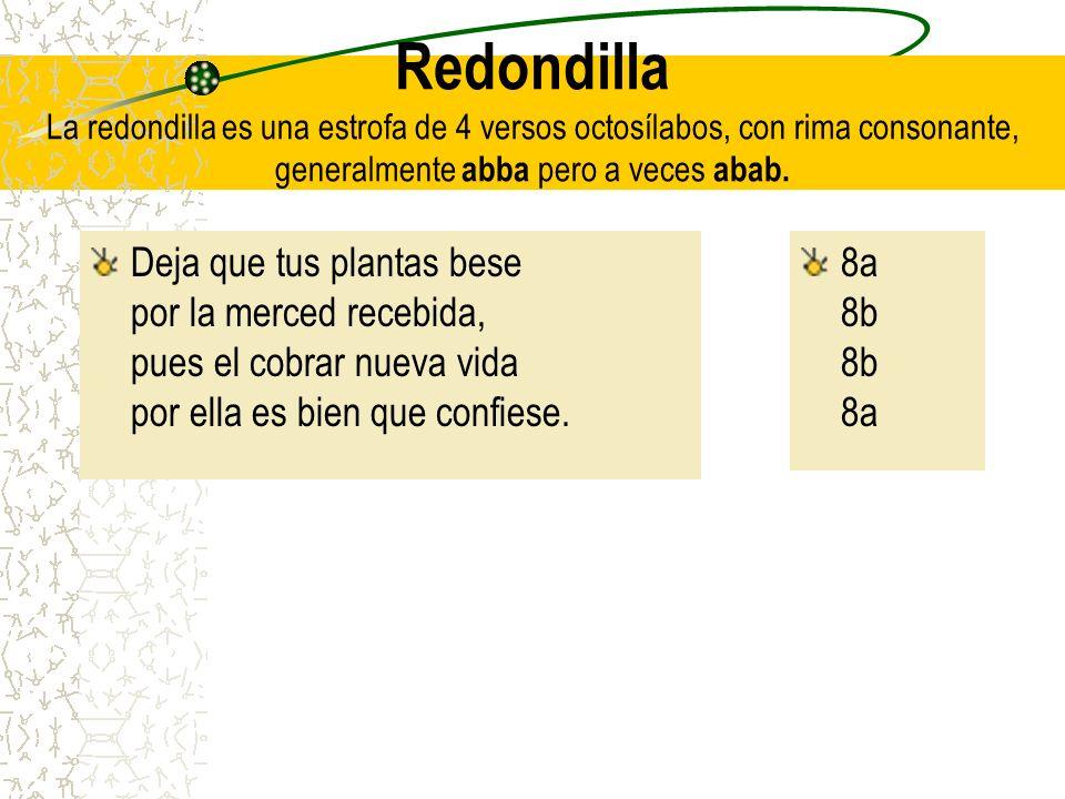 Redondilla La redondilla es una estrofa de 4 versos octosílabos, con rima consonante, generalmente abba pero a veces abab. Deja que tus plantas bese p