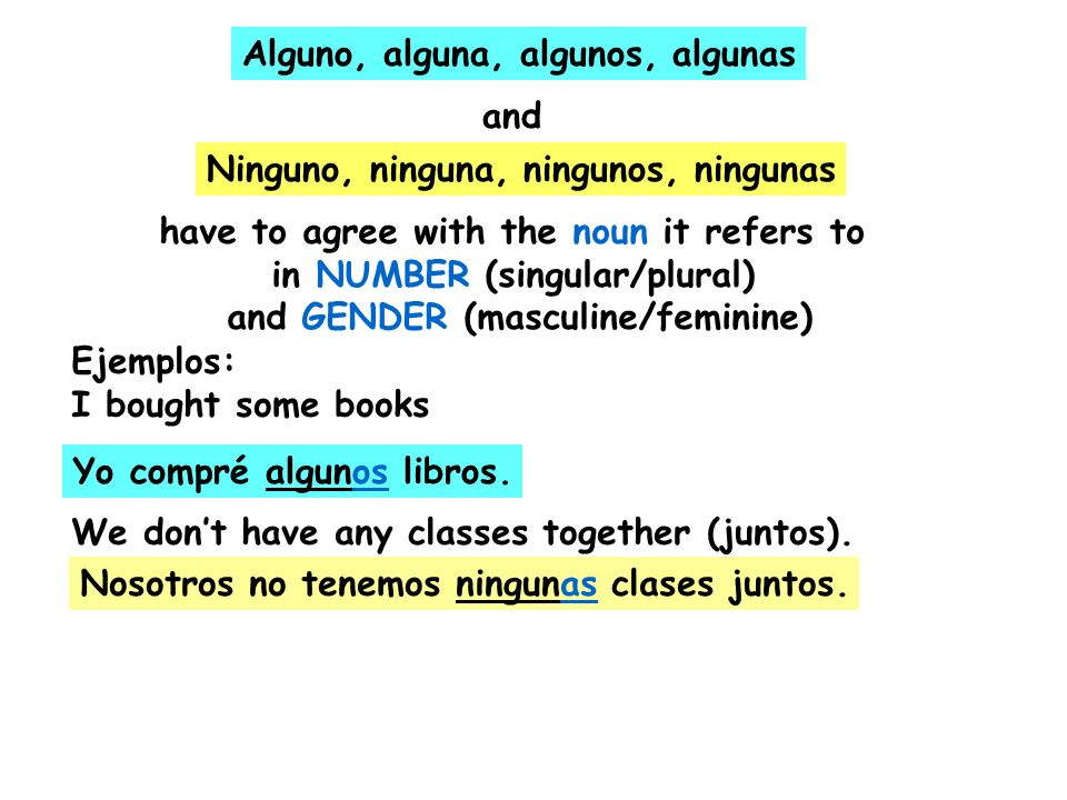 II.When and come before a masculine singular noun, they change to and algunoninguno algúnningún Ejemplo: I dont have any project No tengo ningún proyecto.