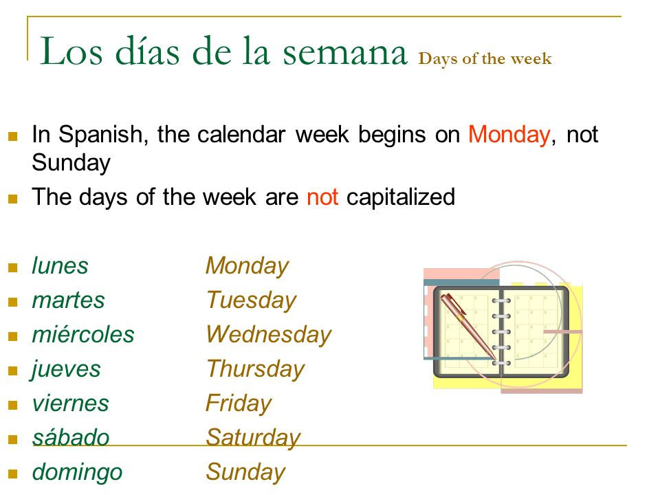 Los días de la semana Days of the week In Spanish, the calendar week begins on Monday, not Sunday The days of the week are not capitalized lunesMonday