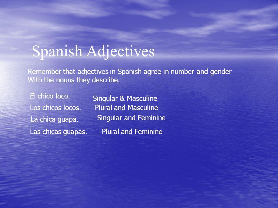 Spanish Adjectives El chico loco.