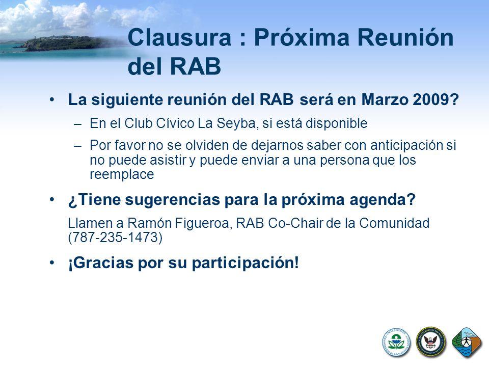 Clausura : Próxima Reunión del RAB La siguiente reunión del RAB será en Marzo 2009.