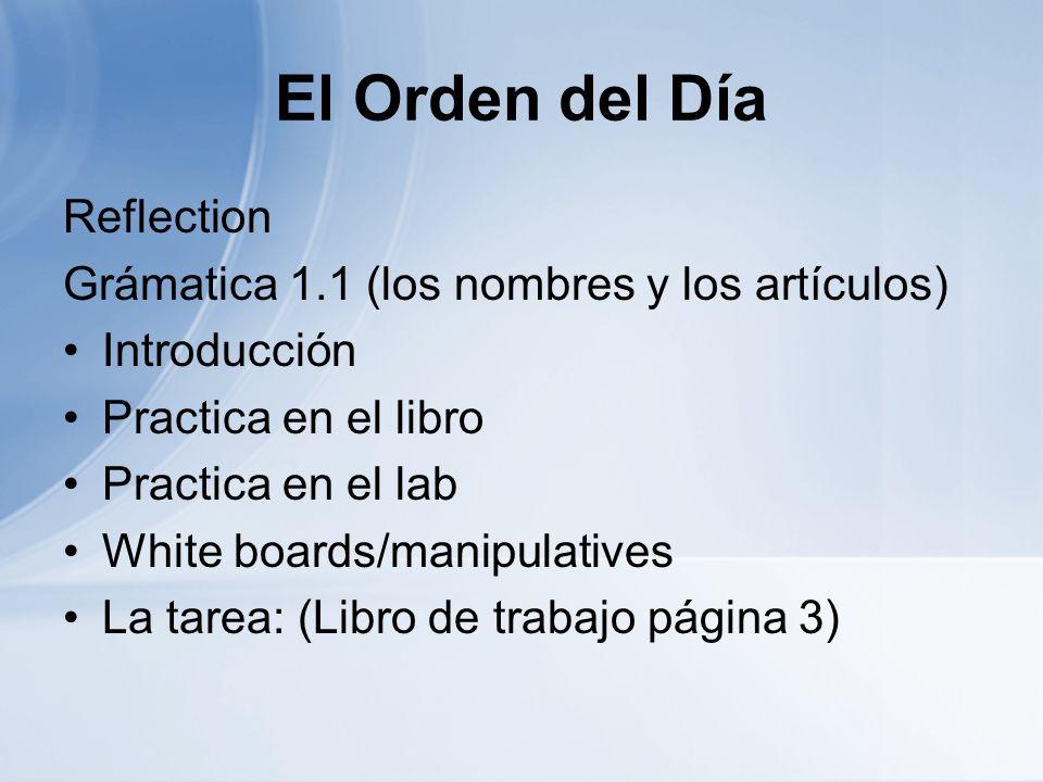 El Orden del Día Reflection Grámatica 1.1 (los nombres y los artículos) Introducción Practica en el libro Practica en el lab White boards/manipulative