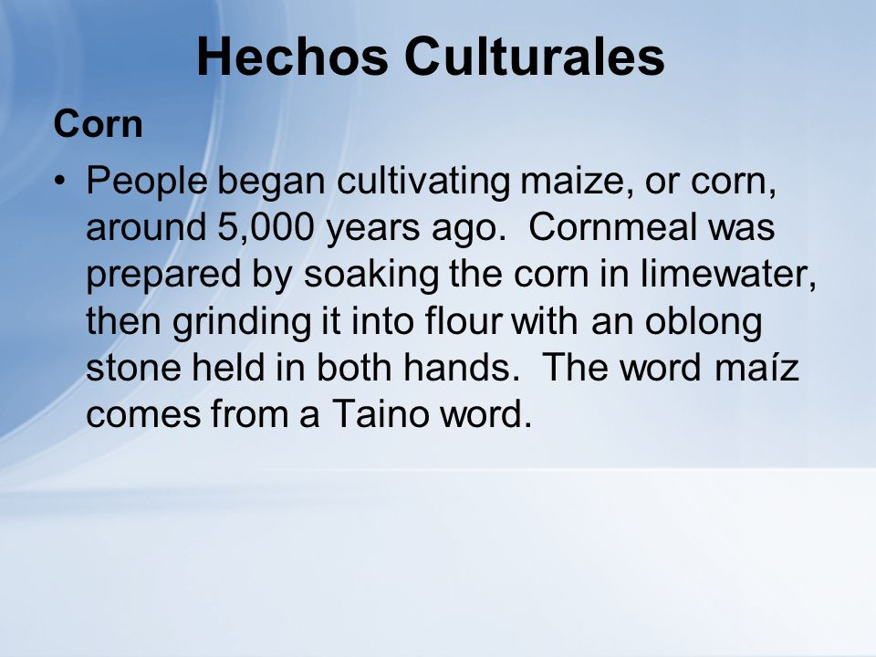 Hechos Culturales Corn People began cultivating maize, or corn, around 5,000 years ago. Cornmeal was prepared by soaking the corn in limewater, then g