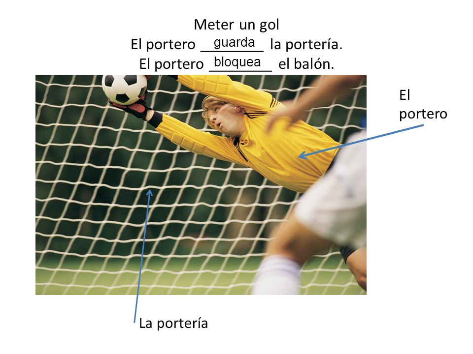Meter un gol El portero ________ la portería.El portero ________ el balón.