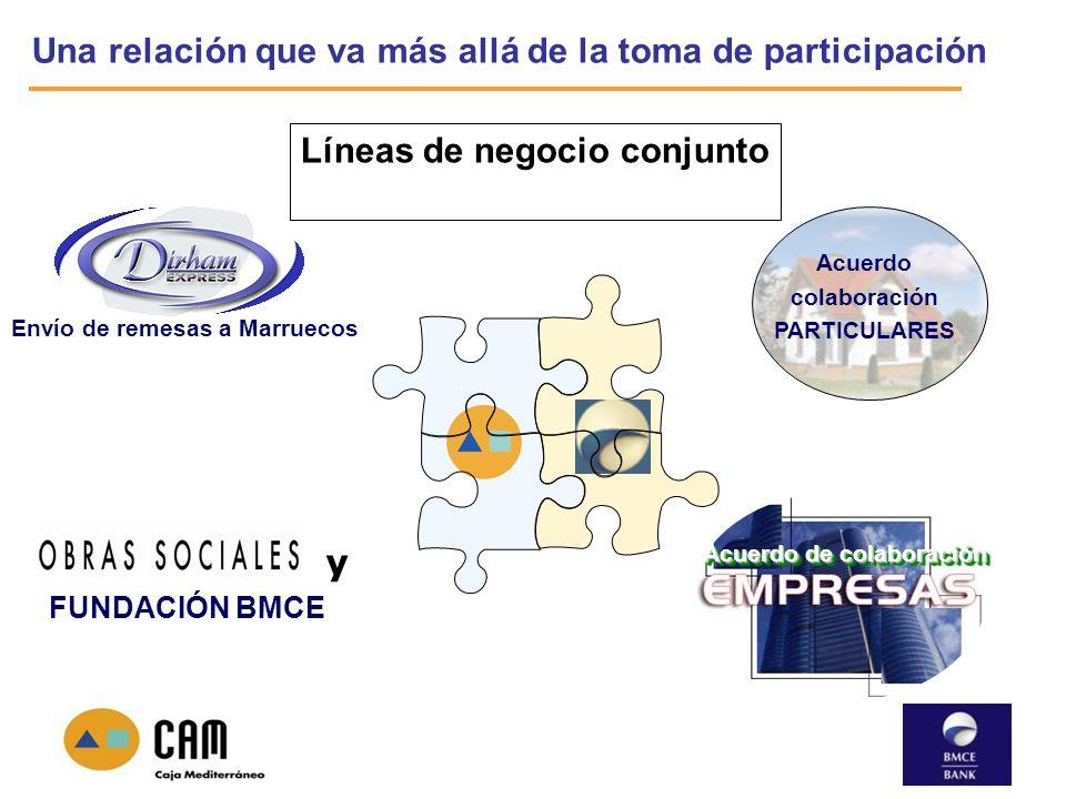 Una relación que va más allá de la toma de participación Acuerdo de colaboración Acuerdo colaboración PARTICULARES Líneas de negocio conjunto Envío de