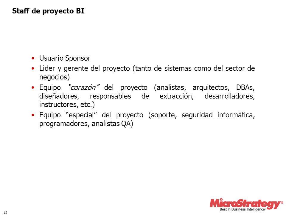 12 Staff de proyecto BI Usuario Sponsor Lider y gerente del proyecto (tanto de sistemas como del sector de negocios) Equipo corazón del proyecto (anal