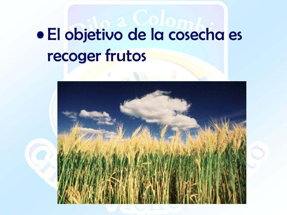 EL PRINCIPIO DE LA COSECHA ¨Entonces dijo a sus discípulos: A la verdad la mies es mucha, mas los obreros pocos.