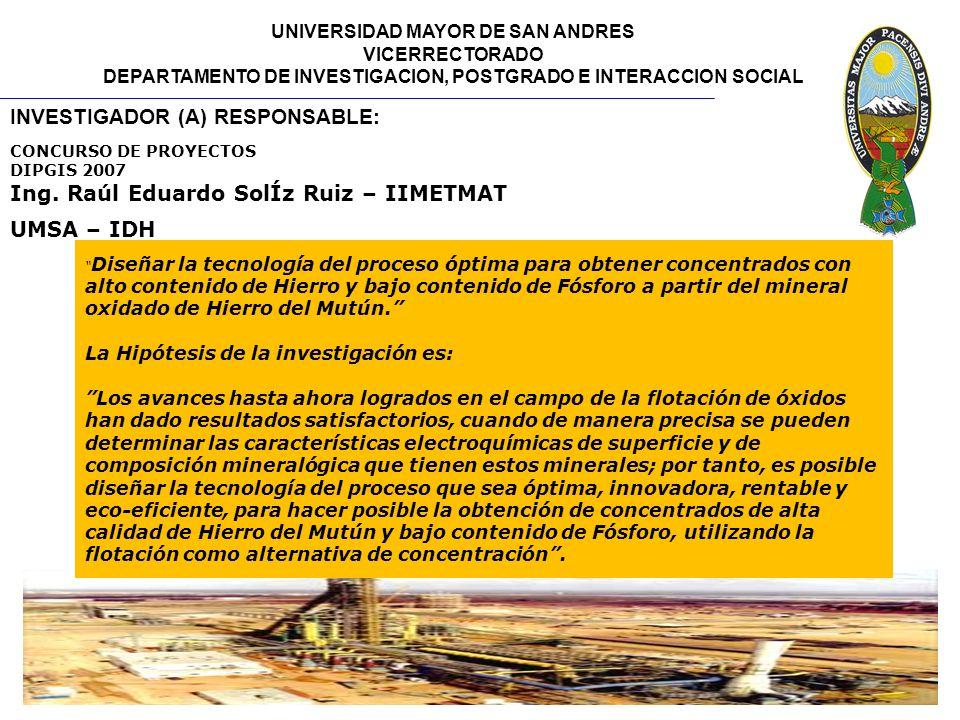 UNIVERSIDAD MAYOR DE SAN ANDRES VICERRECTORADO DEPARTAMENTO DE INVESTIGACION, POSTGRADO E INTERACCION SOCIAL INVESTIGADOR (A) RESPONSABLE: Ing. Raúl E