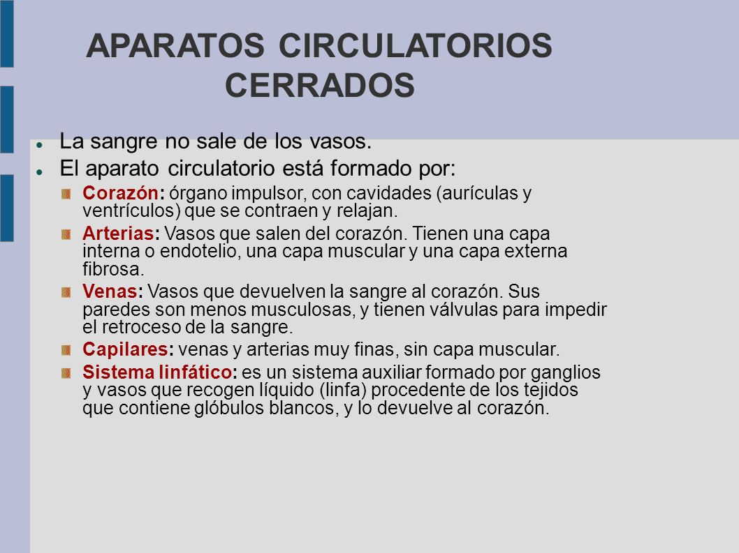 APARATOS CIRCULATORIOS CERRADOS La sangre no sale de los vasos. El aparato circulatorio está formado por: Corazón: órgano impulsor, con cavidades (aur