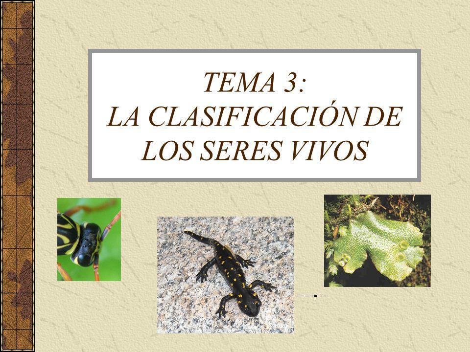 TEMA 3: LA CLASIFICACIÓN DE LOS SERES VIVOS