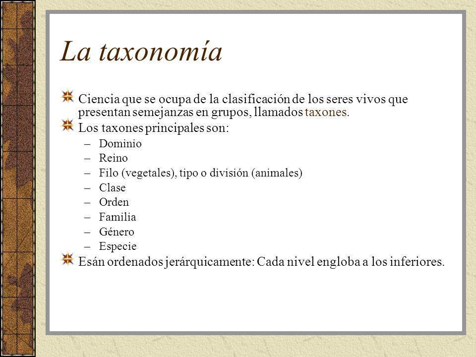 La taxonomía Ciencia que se ocupa de la clasificación de los seres vivos que presentan semejanzas en grupos, llamados taxones. Los taxones principales