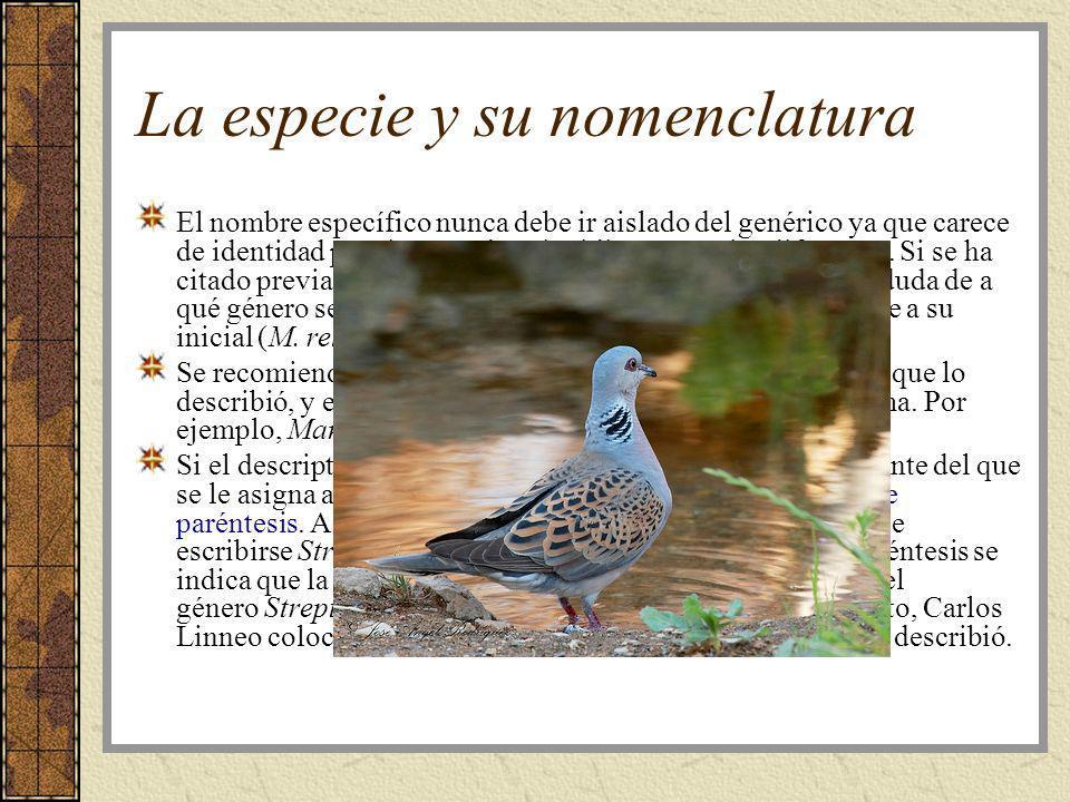 La especie y su nomenclatura La persona que describe la especie por primera vez tiene el honor de nombrarla.