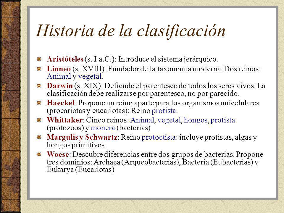 Historia de la clasificación Aristóteles (s. I a.C.): Introduce el sistema jerárquico. Linneo (s. XVIII): Fundador de la taxonomía moderna. Dos reinos