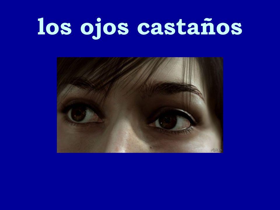 los ojos castaños