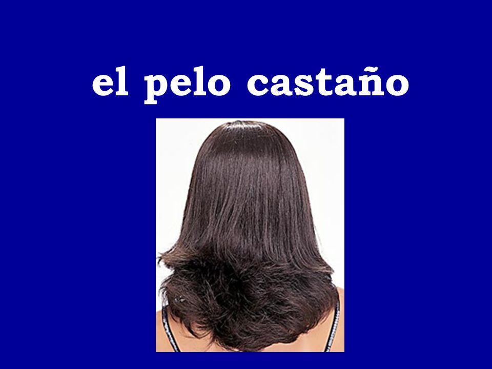 el pelo castaño