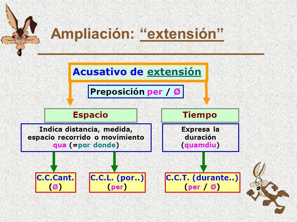 Ampliación: extensión Acusativo de extensiónextensión EspacioTiempo Indica distancia, medida, espacio recorrido o movimiento qua (=por donde) Expresa la duración (quamdiu) Preposición per / Ø C.C.T.