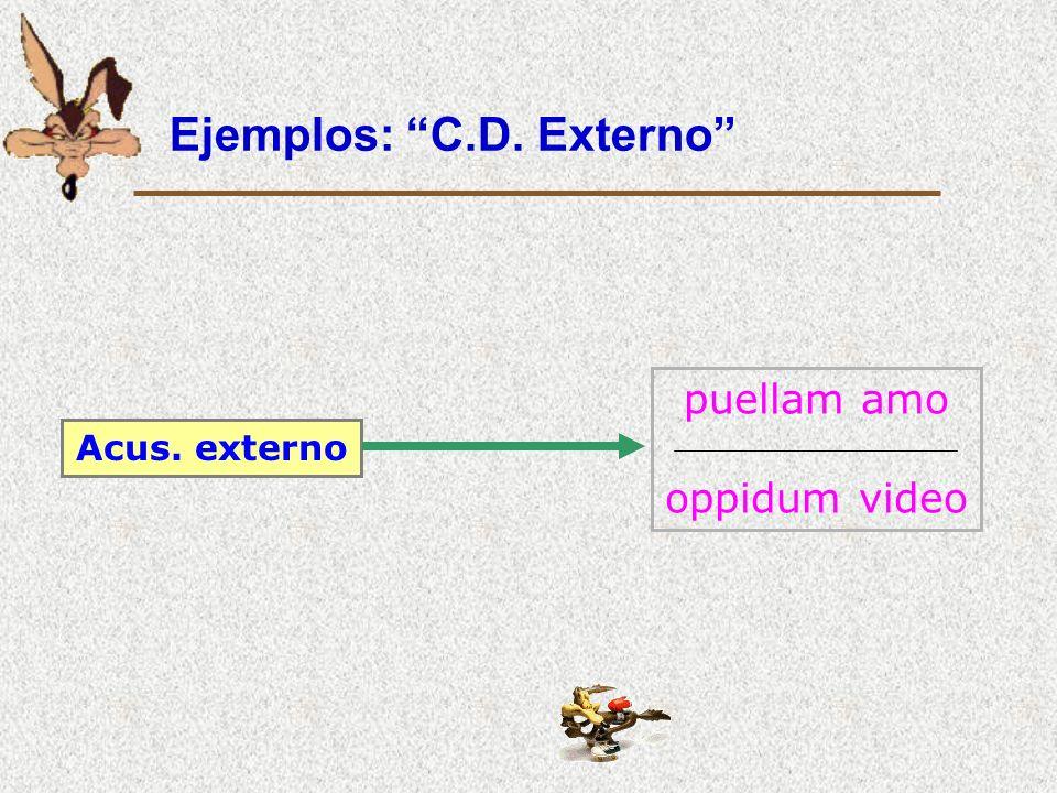 Ejemplos: C.D. Externo Acus. externo puellam amo oppidum video