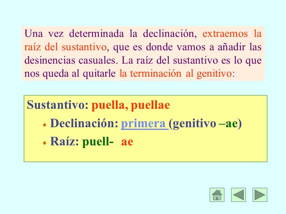 Una vez determinada la declinación, extraemos la raíz del sustantivo, que es donde vamos a añadir las desinencias casuales.