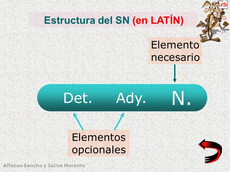 Alfonso Sancho y Jaime Morente Estructura del SN (en LATÍN) N. Det. Elementos opcionales Elemento necesario Ady.