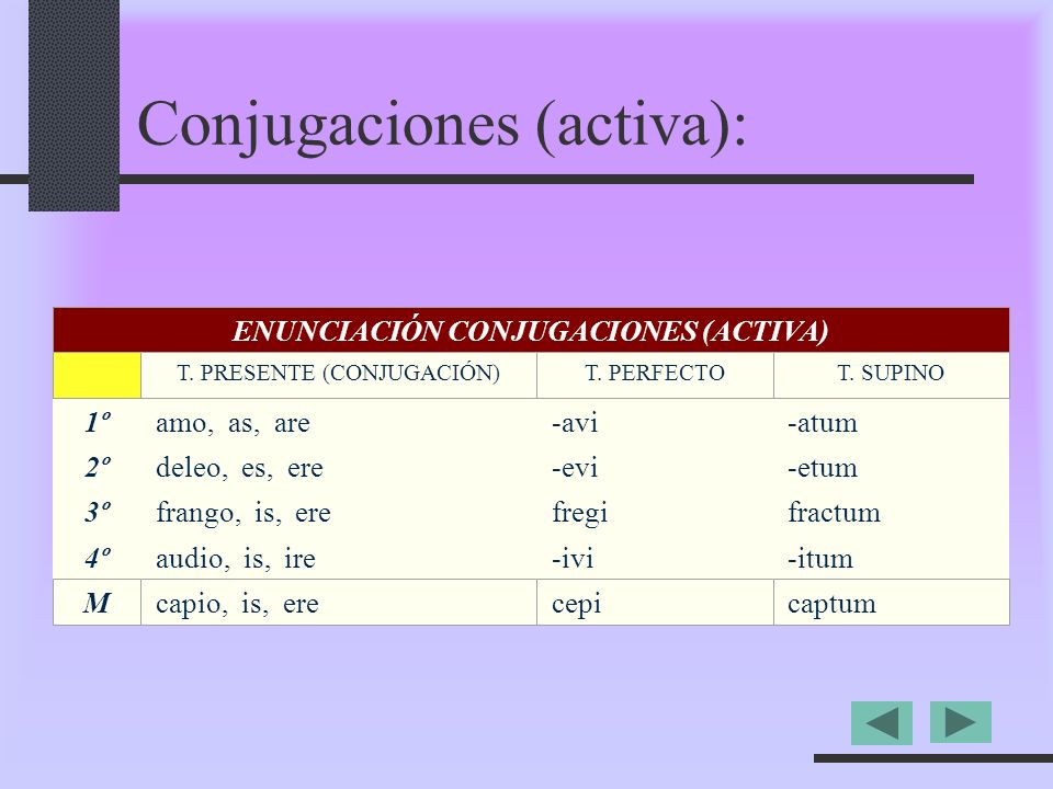 1ºamo, as, are-avi-atum 2ºdeleo, es, ere-evi-etum 3ºfrango, is, erefregifractum 4ºaudio, is, ire-ivi-itum ENUNCIACIÓN CONJUGACIONES (ACTIVA) T.
