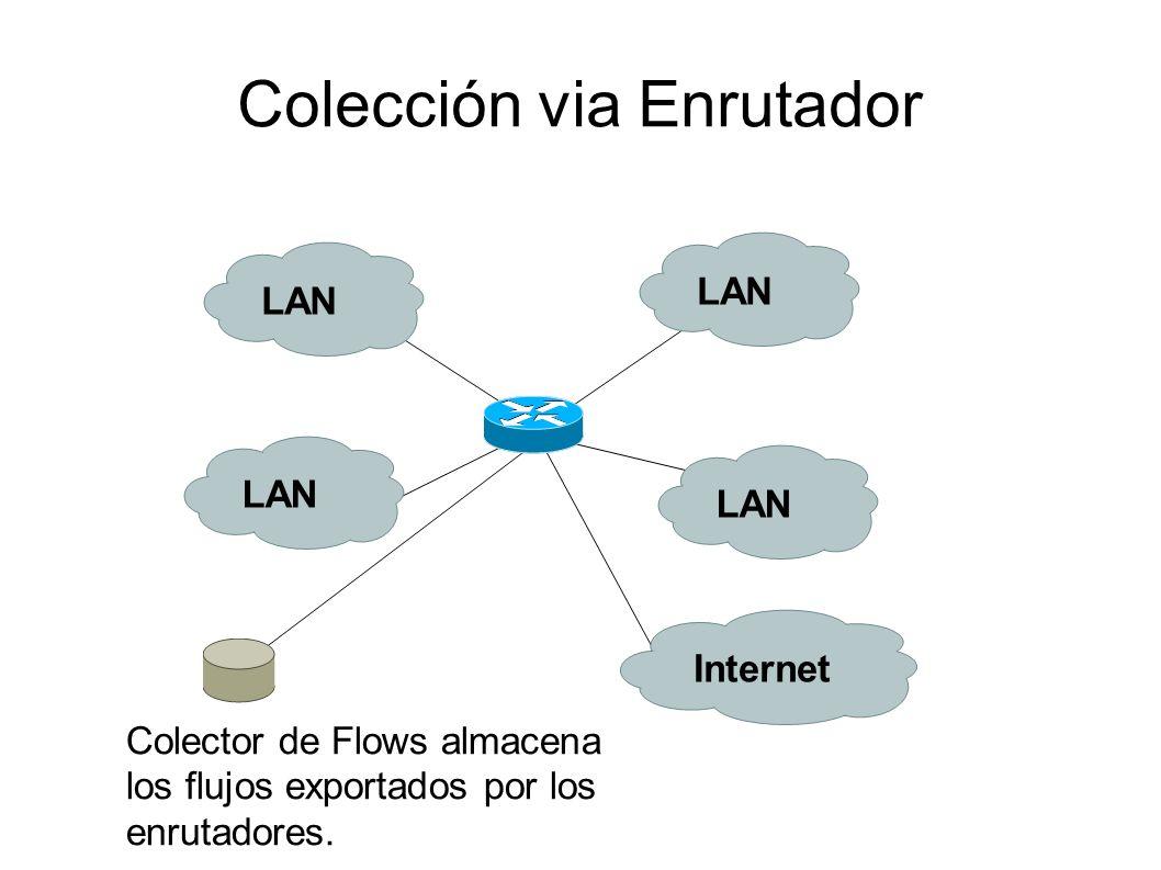 Colección via Enrutador Colector de Flows almacena los flujos exportados por los enrutadores. LAN Internet
