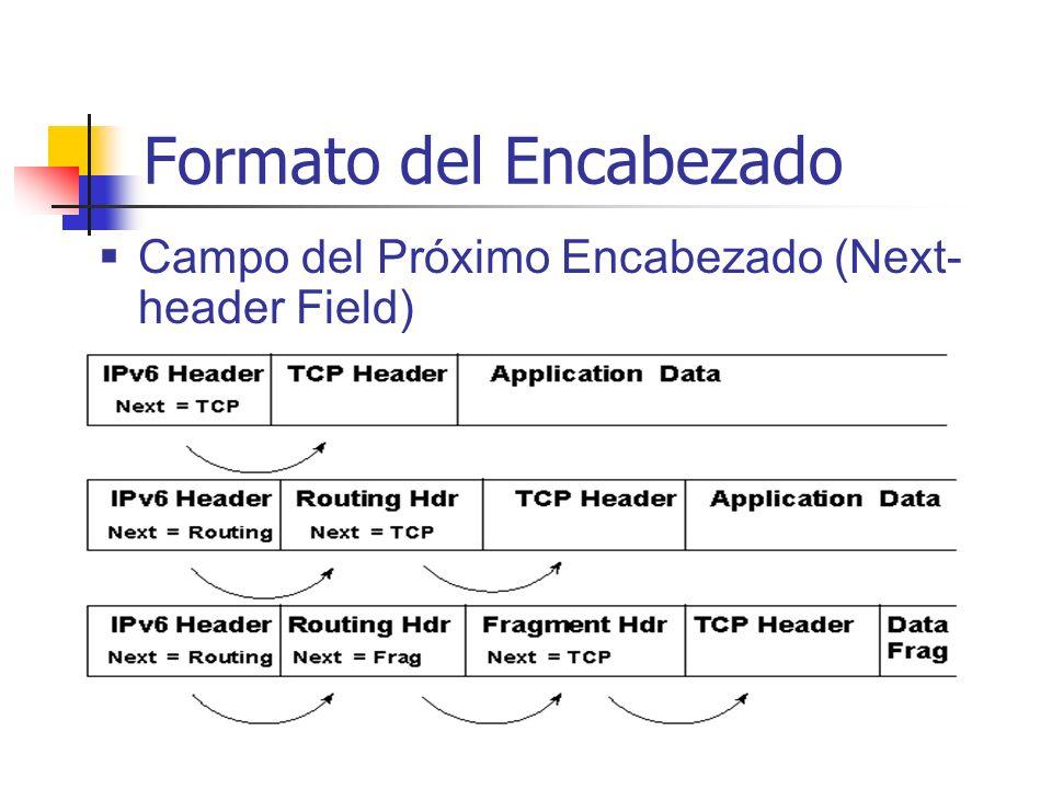 Campo del Próximo Encabezado (Next- header Field)