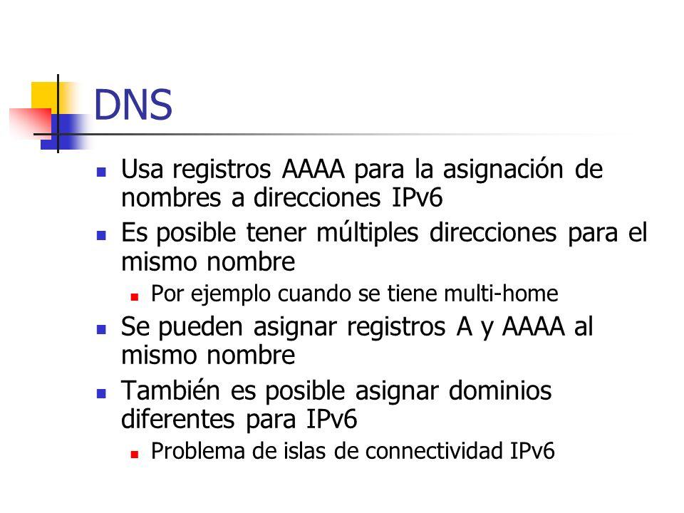 DNS Usa registros AAAA para la asignación de nombres a direcciones IPv6 Es posible tener múltiples direcciones para el mismo nombre Por ejemplo cuando
