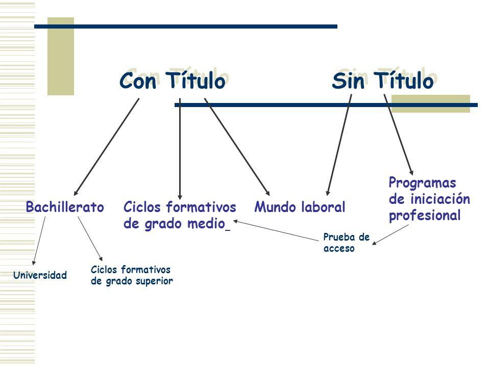 Con Título Sin Título BachilleratoCiclos formativos de grado medio Mundo laboral Programas de iniciación profesional Prueba de acceso Universidad Cicl
