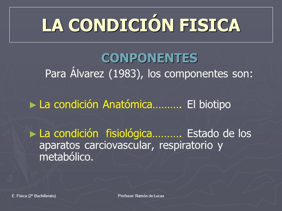 E. Física (2º Bachillerato)Profesor: Ramón de Lucas LA CONDICIÓN FISICA CONPONENTES Para Álvarez (1983), los componentes son: La condición Anatómica……