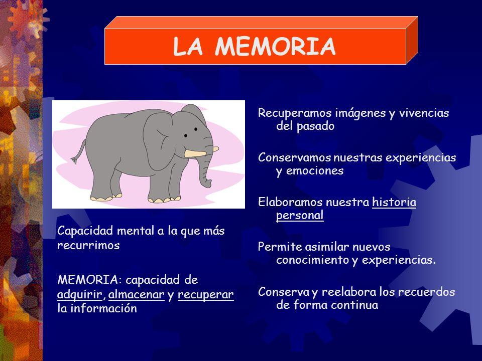 Los diferentes sistemas / componentes de la memoria, guardan distintos tipos de información: Datos autobiográficos Recuerdos de la infancia Imágenes Conocimientos Habilidades Pero a veces......guarda información que no necesitamos, y olvida cosas que queremos recordar
