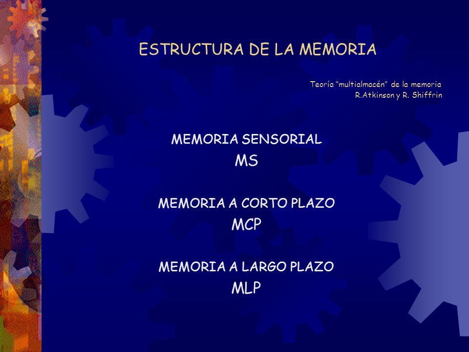 ESTRUCTURA DE LA MEMORIA Teoría multialmacén de la memoria R.Atkinson y R. Shiffrin MEMORIA SENSORIAL MS MEMORIA A CORTO PLAZO MCP MEMORIA A LARGO PLA