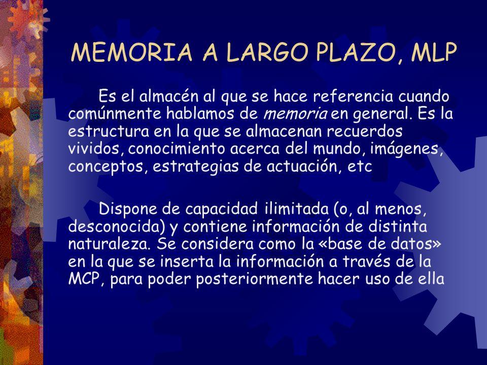 MEMORIA A LARGO PLAZO, MLP Es el almacén al que se hace referencia cuando comúnmente hablamos de memoria en general. Es la estructura en la que se alm